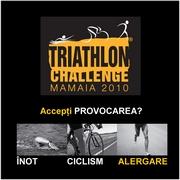 Triathlon Challenge 2010