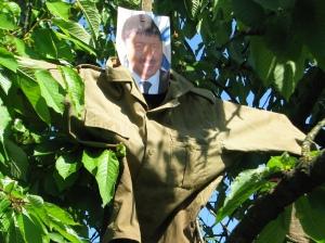 Sperietoarea Basescu
